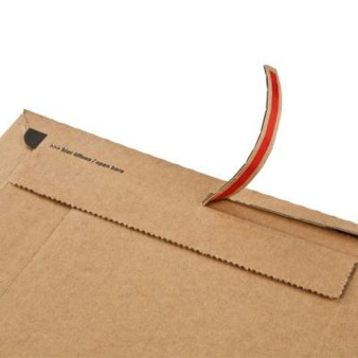 Afbeelding voor Book packaging with adhesive tear-off strip (25,1 x 16,5 x 6 cm)