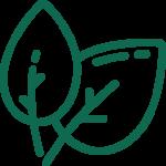 Afbeelding voor Green choice
